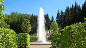 De zonnige dag kan binnen in het Lagere Park Peterhof, Heilige Petersburg stock video