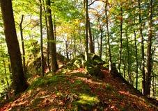 De zonnige dag van de herfst in berg Karpatisch bos Stock Afbeelding