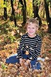 De zonnige herfst Royalty-vrije Stock Foto