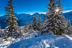 De zonnige sleep van de de winterberg Stock Foto's