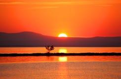 De zonsondergang Stock Afbeeldingen