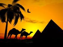 De zonsondergang Egypte van de woestijn Stock Afbeeldingen