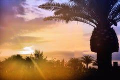 De zonsondergang is het leven stock afbeelding