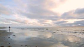 De zonsondergang, langs de oever, een vrouw loopt met haar hond langs het Noordzeestrand stock video