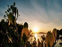 De zonsondergang neemt gluurt heimelijk royalty-vrije stock afbeelding