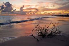 De Zonsondergang van Anegada Stock Foto's
