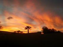 De Zonsondergang van Arizona Royalty-vrije Stock Foto's