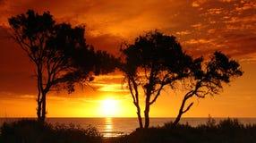 De zonsondergang van Corsica Stock Afbeeldingen