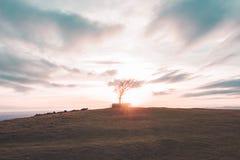 De zonsondergang van de Cleeveheuvel Stock Foto's