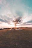 De zonsondergang van de Cleeveheuvel Royalty-vrije Stock Foto's