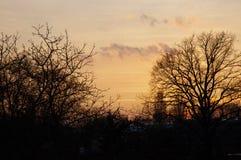 De zonsondergang van de herfst Bos in Roemenië Stock Afbeeldingen