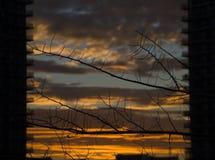 De zonsondergang van de herfst Bos in Roemenië Stock Foto