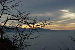 De zonsondergang van de herfst Bos in Roemenië Stock Afbeelding