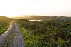 De Zonsondergang van de landweg, Ierland Stock Foto