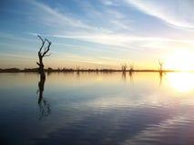 De Zonsondergang van de Rivier van Murray Stock Afbeeldingen