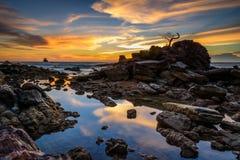 De zonsondergang van de rotsbonsai Stock Foto's