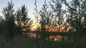 De zonsondergang van de schoonheidszomer op een stil meer stock footage