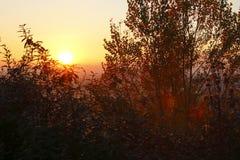 De zonsondergang van de winter Royalty-vrije Stock Afbeelding
