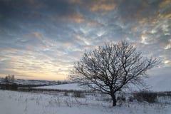 De zonsondergang van de winter dichtbij Roemeens dorp Stock Foto