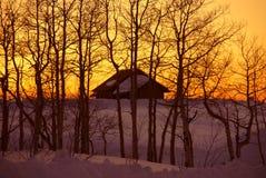 De zonsondergang van de winter: huis en naakte espen Royalty-vrije Stock Foto