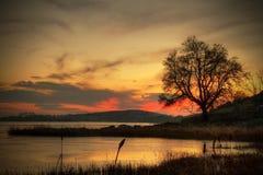 De zonsondergang van de winter in Ierland Stock Foto's