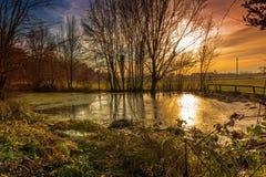 De zonsondergang van de winter op vijver royalty-vrije stock afbeelding