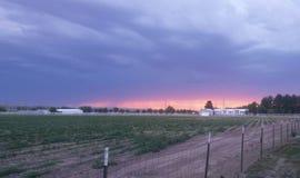 De zonsondergang van de woestijn Royalty-vrije Stock Afbeelding