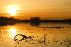 De zonsondergang van de zomer stock afbeelding