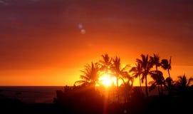 De zonsondergang van Hawaiin Stock Afbeeldingen