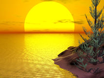 De Zonsondergang van het Eiland van de boom royalty-vrije illustratie