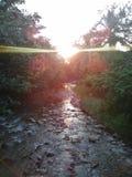 De zonsondergang van het kreekbed Royalty-vrije Stock Foto's