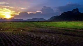 De Zonsondergang van het landschapsplatteland bij Landbouwbedrijfgebied Stock Fotografie