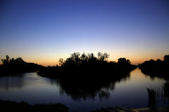 De Zonsondergang van het moeras royalty-vrije stock afbeelding