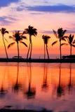 De zonsondergang van het paradijsstrand met tropische palmen Stock Foto