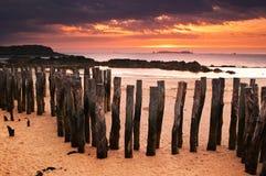 De zonsondergang van het strand Royalty-vrije Stock Fotografie