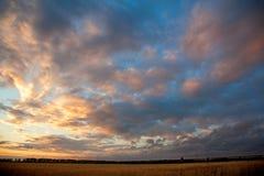 De zonsondergang van het tarwegebied Stock Foto
