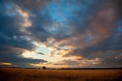 De zonsondergang van het tarwegebied Stock Afbeelding