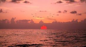 De Zonsondergang van Napels, Florida royalty-vrije stock afbeelding