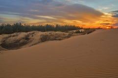 De zonsondergang van Nice op de zandsteengroeve, in het hout Royalty-vrije Stock Fotografie