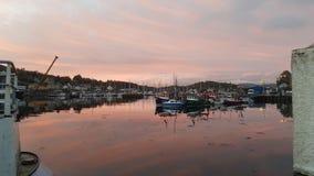 De zonsondergang van de Tarbertjachthaven stock fotografie