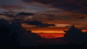 De zonsondergang van de tijdtijdspanne, zonsopgang in wildernis, silhouetten van palm, heldere cirrus betrekt stock videobeelden