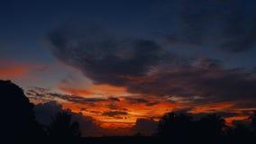 De zonsondergang van de tijdtijdspanne, zonsopgang in wildernis, silhouetten van palm, heldere cirrus betrekt stock video