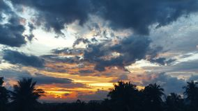 De zonsondergang van de tijdtijdspanne, zonsopgang in wildernis, silhouetten van palm, heldere cirrus betrekt stock footage