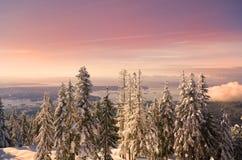 De Zonsondergang van Vancouver Stock Afbeeldingen