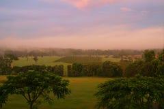 De zonsondergang van Vinyard Stock Foto's