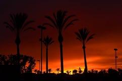 DE ZONSONDERGANGachtergrond VAN CALIFORNIË Royalty-vrije Stock Fotografie