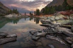 De Zonsondergangkust van het bergmeer met Pijnboom Forest And Rocks, Altai-de Aard Autumn Landscape Photo van het Bergenhoogland Stock Afbeelding