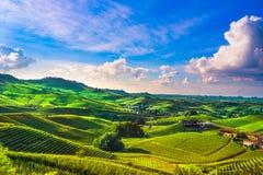De zonsondergangpanorama van Langhewijngaarden, Barolo, Piemonte, Italië Europa royalty-vrije stock afbeelding