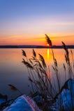 De zonsondergangsparren stellen het Park van de Staat in werking Stock Foto's