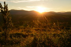 De zonsondergangzomer royalty-vrije stock fotografie